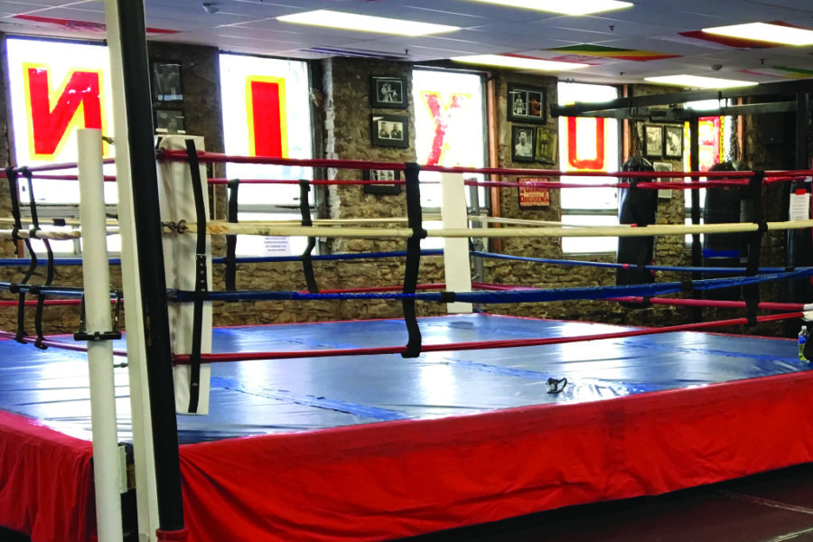 Business Member Spotlight - Bloor Street Fitness & Boxing