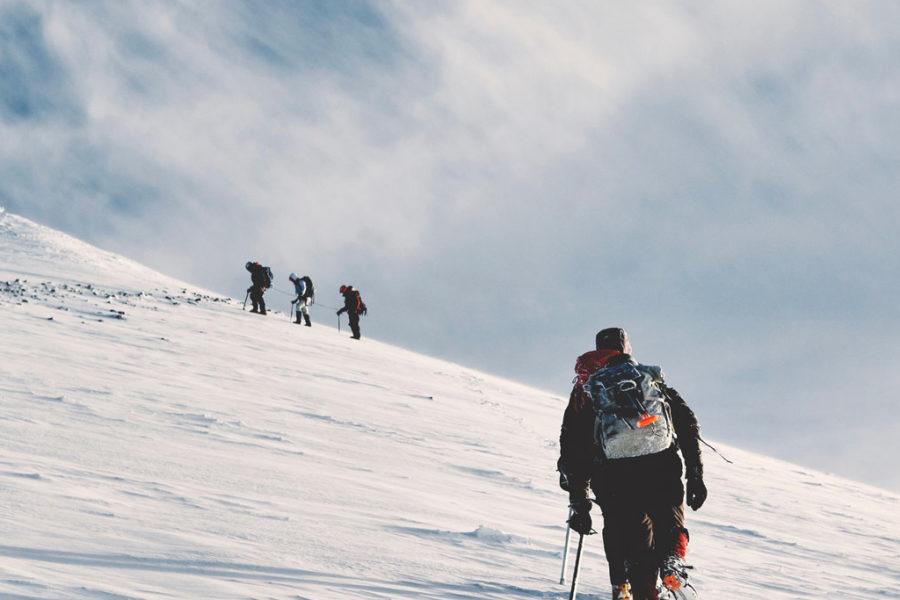 Vendor Spotlight: Altitude Athletic Training